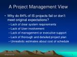 a project management view