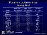 fusarium crown rot trials huntley 2005