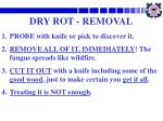 dry rot removal
