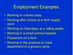 employment examples
