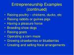 entrepreneurship examples continued
