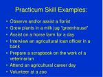 practicum skill examples1