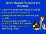 school related practicum skill examples