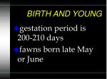 birth and young