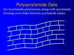 polyacrylamide gels4