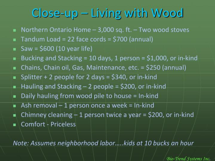 Close-up – Living with Wood