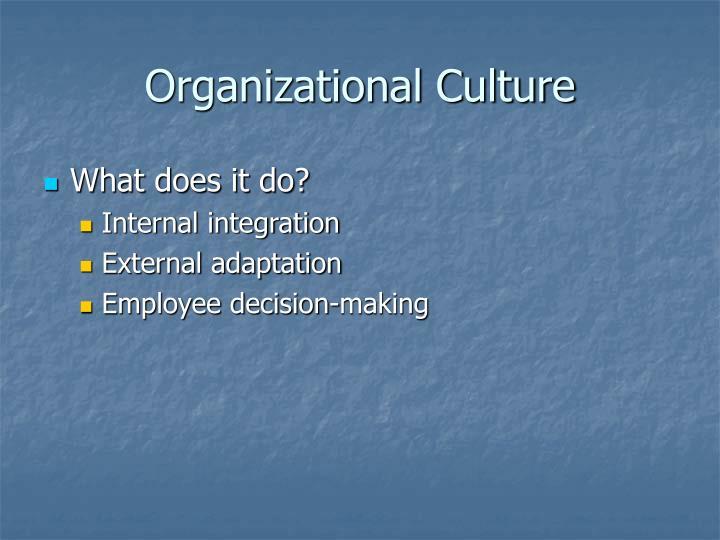 Organizational culture1