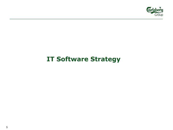 IT Software Strategy