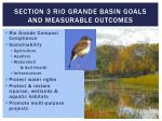 section 3 rio grande basin goals and measurable outcomes1