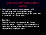 commas with introductory words