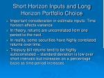 short horizon inputs and long horizon portfolio choice