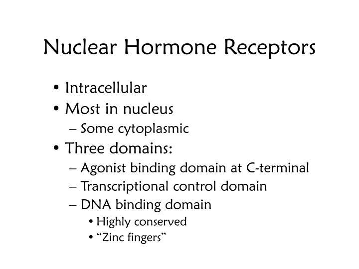Nuclear Hormone Receptors