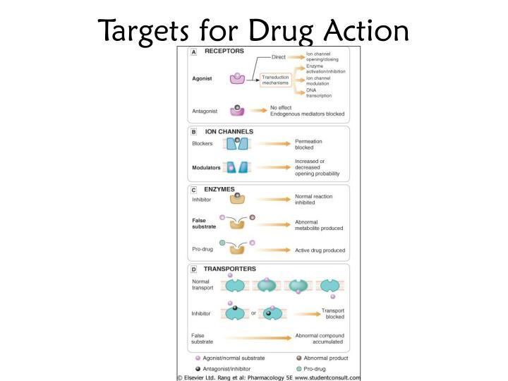 Targets for Drug Action
