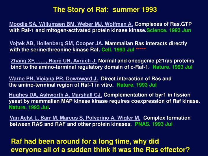 The Story of Raf:  summer 1993