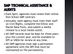 smp technical assistance audits2