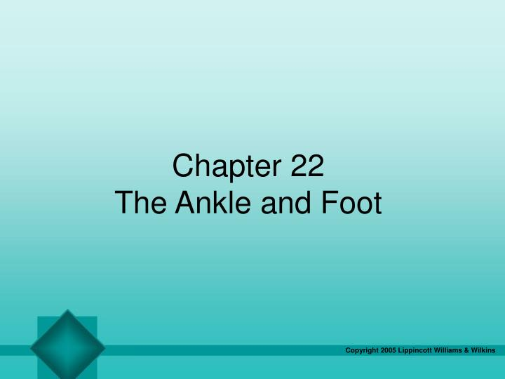 chapter 22 the ankle and foot n.