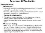 agronomy of tea contd5