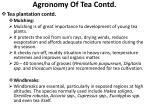 agronomy of tea contd6