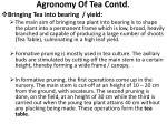 agronomy of tea contd7