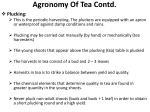 agronomy of tea contd8