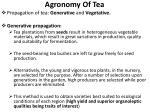 agronomy of tea