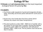 ecology of tea