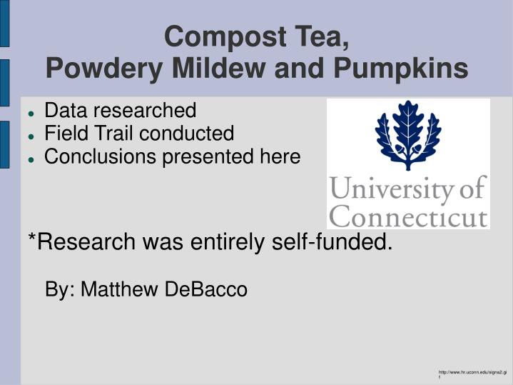 compost tea powdery mildew and pumpkins n.