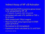 indirect assay of nf b activation