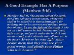 a good example has a purpose matthew 5 16