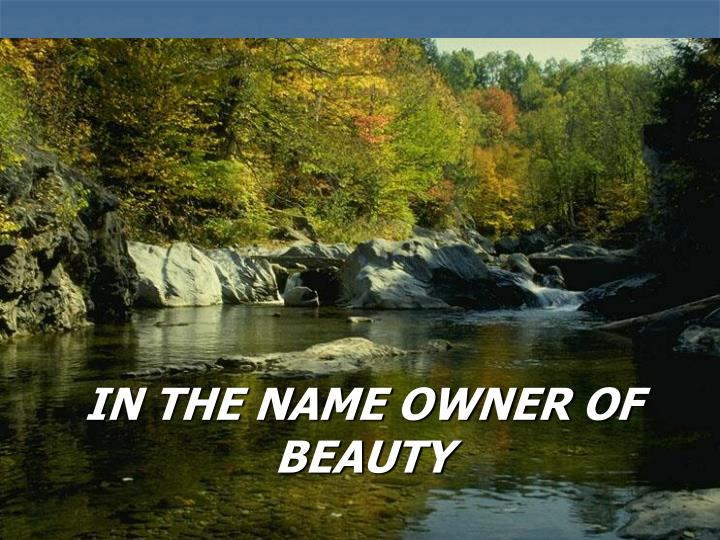 in the name owner of beauty n.