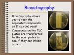 bioautography