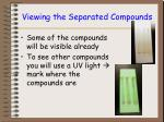 viewing the separated compounds