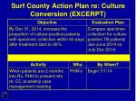 surf county action plan re culture conversion excerpt