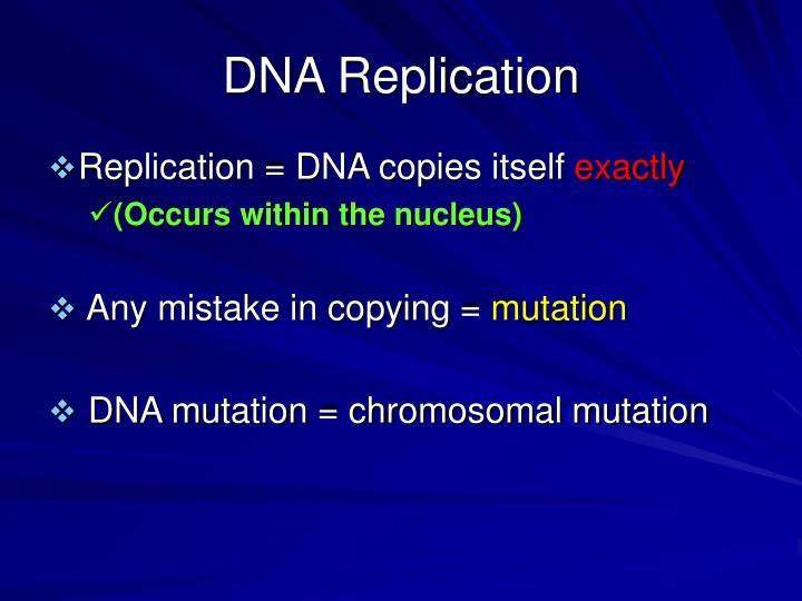 Dna replication1