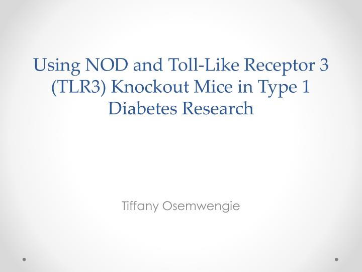 using nod and toll like receptor 3 tlr3 knockout mice in type 1 diabetes research n.