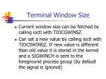 terminal window size1