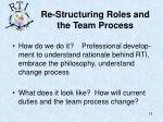 re structuring roles and the team process1