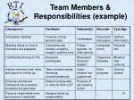 team members responsibilities example
