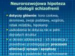 neurorozwojowa hipoteza etiologii schizofrenii1