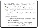what is it services responsibility