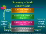 summary of audit sample steps