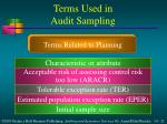 terms used in audit sampling