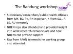 the bandung workshop