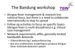 the bandung workshop1