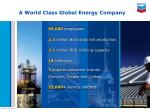 a world class global energy company