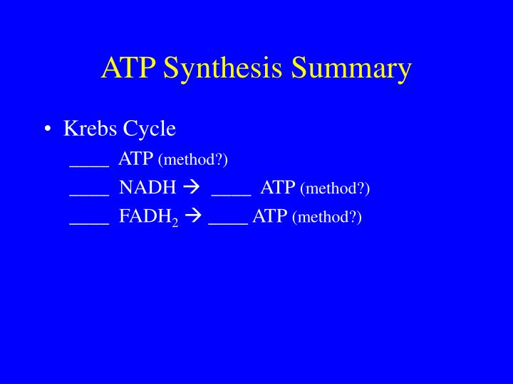 ATP Synthesis Summary