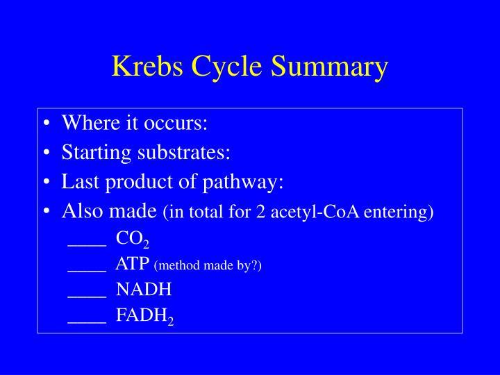 Krebs Cycle Summary