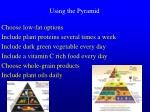 using the pyramid
