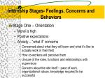 internship stages feelings concerns and behaviors1
