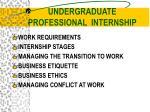 undergraduate professional internship